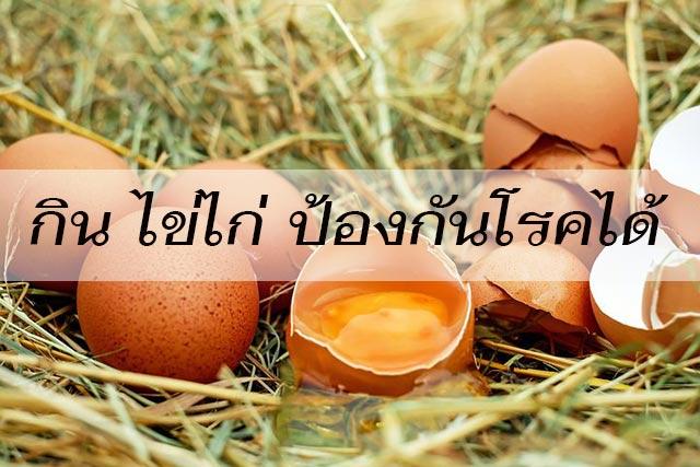 กิน-ไข่ไก่-ป้องกันโรคได้