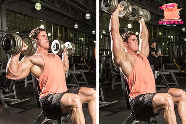 กล้ามไหล่กลมสวยด้วยเวทเทรนนิ่ง 3 ท่า สุขภาพ กีฬา ลดน้ำหนัก หุ่นดี เทคนิคกล้ามไหล่