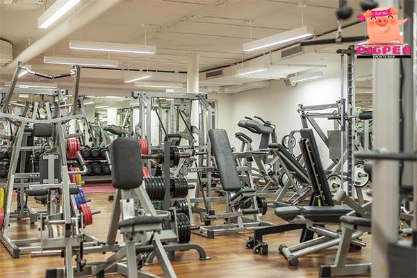 อยากเริ่มต้นเข้าฟิตเนส ควรเริ่มยังไงดี สุขภาพ กีฬา ลดน้ำหนัก หุ่นดี เริ่มต้นเข้าฟิตเนส
