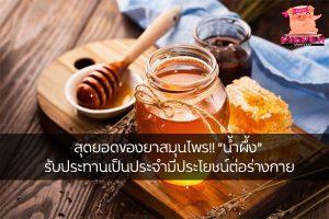 """สุดยอดของยาสมุนไพร!! """"น้ำผึ้ง"""" รับประทานเป็นประจำมีประโยชน์ต่อร่างกาย สุขภาพ กีฬา ลดน้ำหนัก หุ่นดี วิ่งเพื่อสุขภาพ เทคนิคลดความอ้วน ประโยชน์น้ำผึ้ง"""