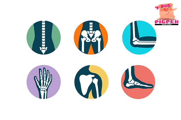 5 พฤติกรรมทำลายกระดูก เสื่อมไว ไม่คล่องตัว สุขภาพ กีฬา ลดน้ำหนัก หุ่นดี วิ่งเพื่อสุขภาพ เทคนิคลดความอ้วน พฤติกรรมทำลายกระดูก