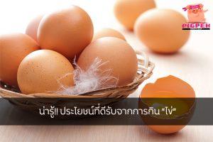 """น่ารู้!! ประโยชน์ที่ดีรับจากการกิน """"ไข่"""" สุขภาพ กีฬา ลดน้ำหนัก หุ่นดี วิ่งเพื่อสุขภาพ ประโยชน์จากการกินไข่"""